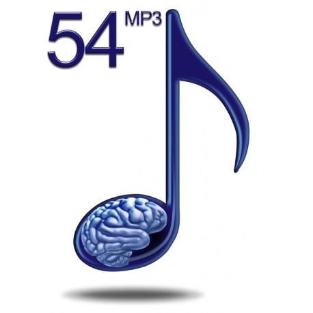 54 - Maximale Lerngeschwindigkeit